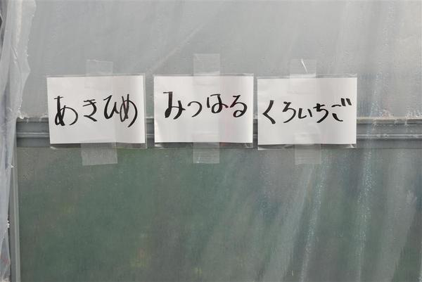 010_R.jpg